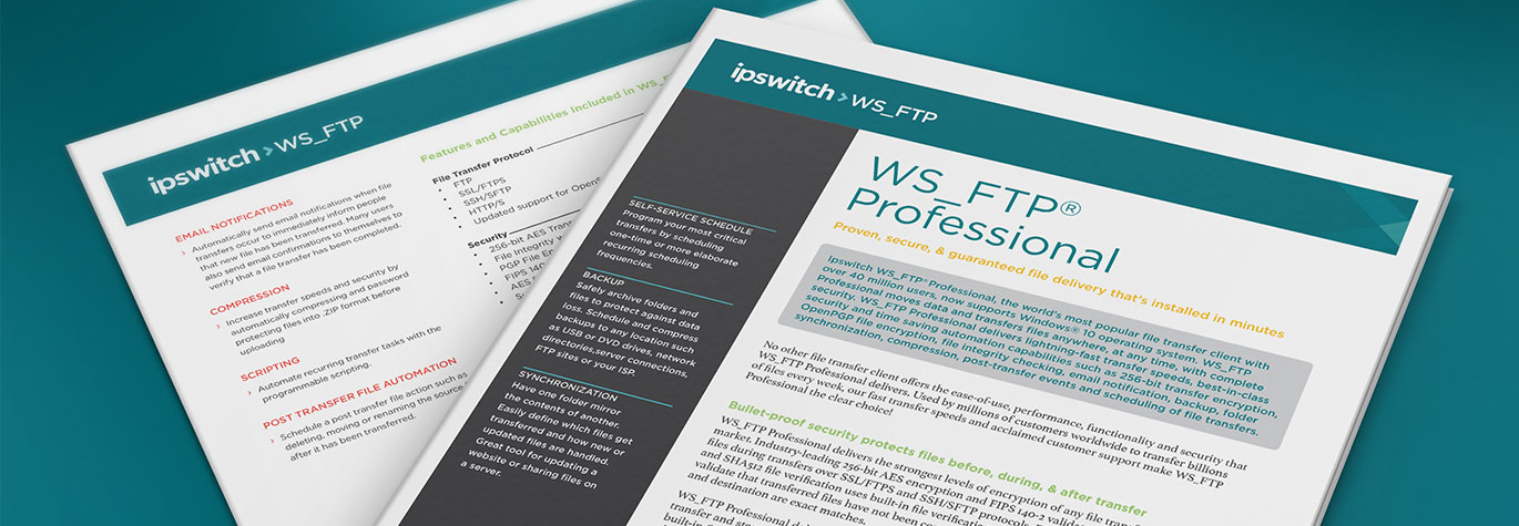 ws_ftp-professional