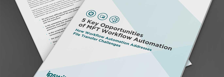 5-MFT-workflow-automation