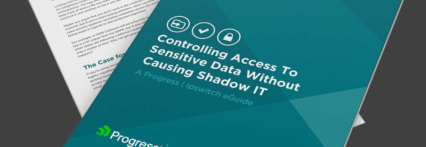 Controlling-Access-To-Sensitive-Data-Without-Causing-Shadow-IT